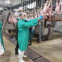 Акмола: Проведена проверка «Макинской птицефабрики»