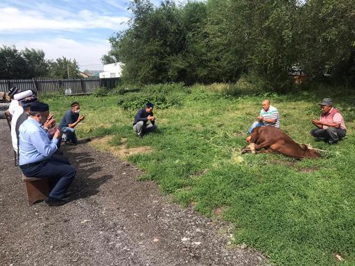 Қарағанды: «Бала қажы» мешітінде құрбан шалынды