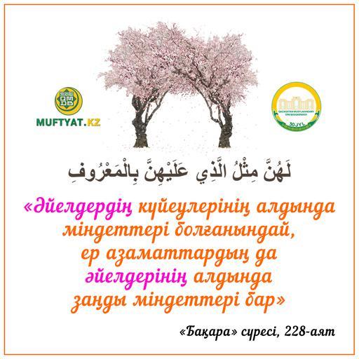 Бақара сүресі, 228-аят