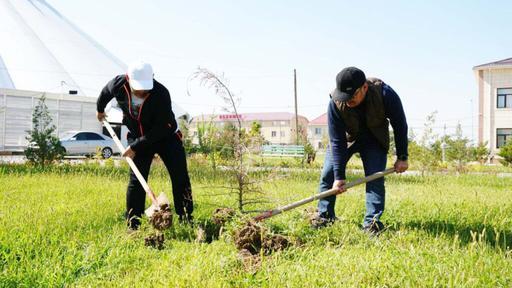 Шымкент: Тазалық жұмыстары жүргізілді