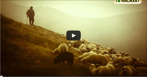 Молитва пастуха