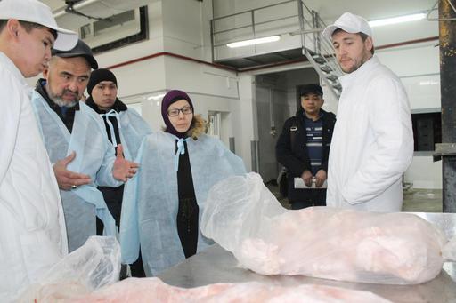 «Халал Даму»: Павлодарлық құс фабрикасы тексерілді