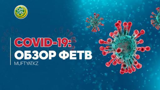 COVID-19: ОБЗОР ФЕТВ
