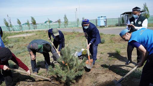 Ақтөбе: Тәуелсіздіктің 30 жылдығына 30 түп ағаш отырғызылды