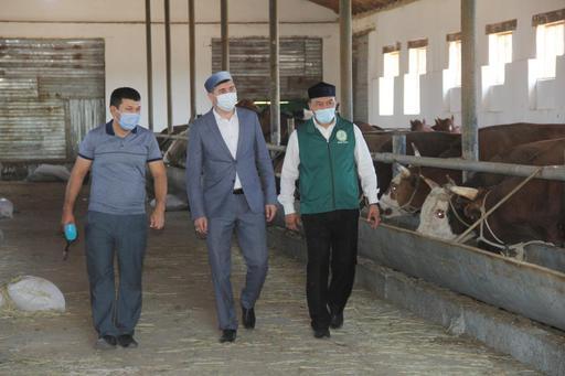Қызылорда: Бас имам қасапхана дайындығымен танысты